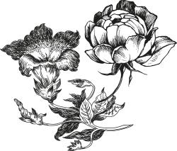 royal_roulotte_fleurs_contact